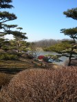 View from the Japanese Garden